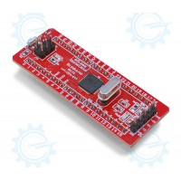 gizDuino + Mini with ATmega164 with pins